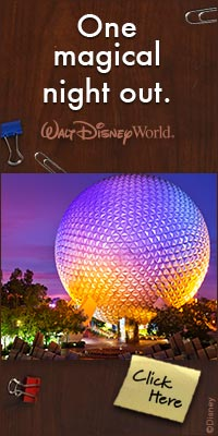 walt-disney-world_epcot-night-out_200x400