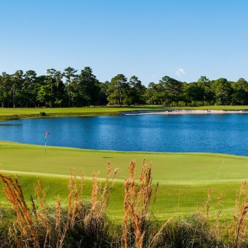 Caladonia Golf Club in Myrtle Beach, SC